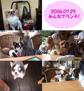2006.07.29-2.jpg