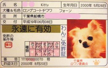 2007.06.09-1.jpg