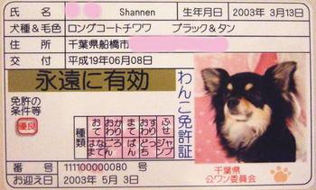2007.06.09-2.jpg